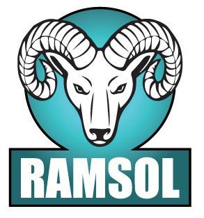 Ramsol Saniitiser Spray